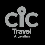 CIC-logo-gris