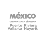 Pto Vallarta logo gris